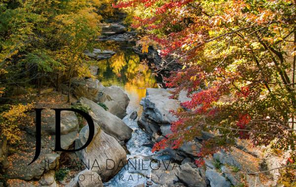 """Центральный парк """"электрического"""" города Скрэнтон, Пенсильвания, США"""