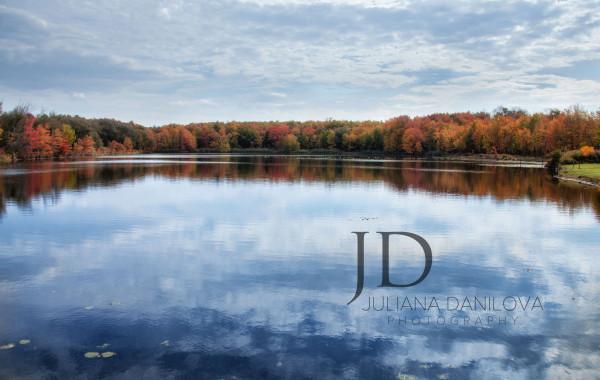 Осенняя лесная Пенсильвания